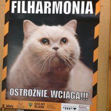 Podziękowania dla Filharmonii Dolnośląskiej